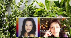 билки против инсулт и атеросклероза, възстановяване