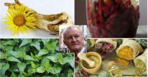 Лечение на подагра с билки и бабини рецепти