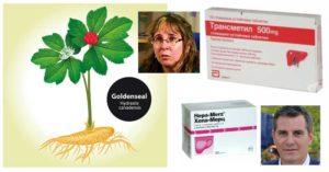 hepa-merz-transmetyl