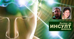 билки за инсулт, мнения, лечение симптоми, възстановяване