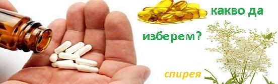 лечение с билки, спирея, Демир бозан