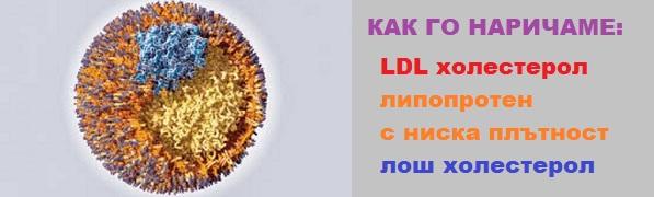 LDL, лош холестерол, липопротеин с ниска плътност, демир бозан, лечение с билки