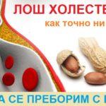 Лош холестерол: Как вреди? Как да го контролираме и намалим. Лекарства, храни и билки