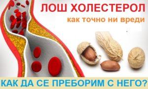 лош холестерол, лечение с демир бозан