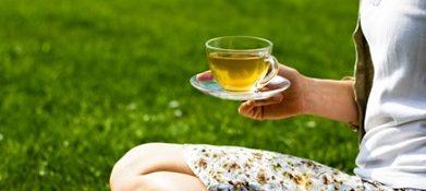 билки и чай при песъчинки в бъбреците, Демир бозан