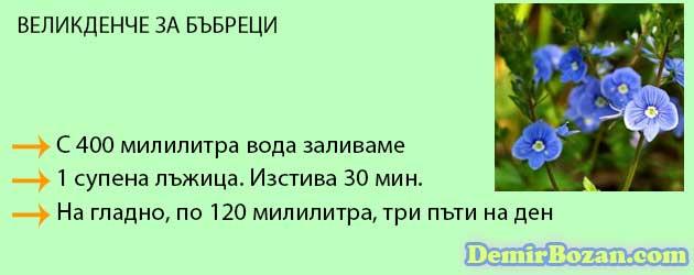 05 билки за бъбреци великденче