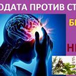 6 обикновени билки за нерви, които ще ви избавят от ядовете